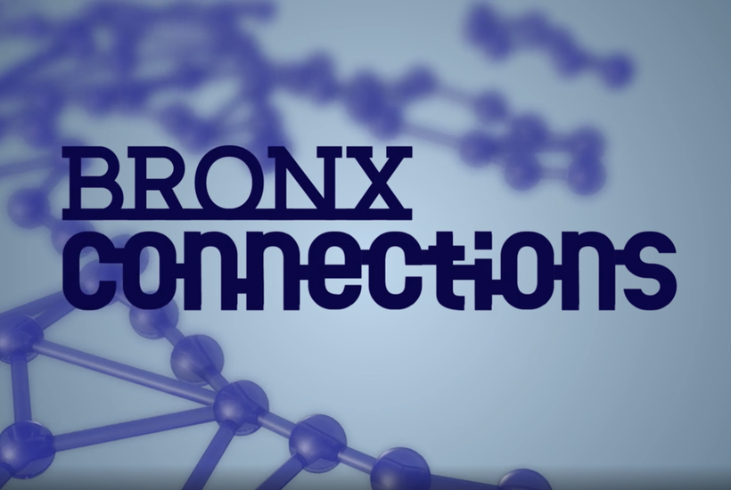 Bronx Connections: Back to School