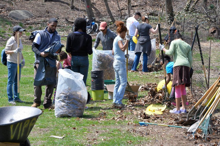 Meet 5 Organizations Dedicated to a More Sustainable Bronx